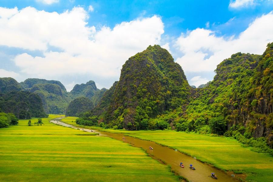 Mùa vàng Tam Cốc, danh thắng nổi bật của Ninh Bình