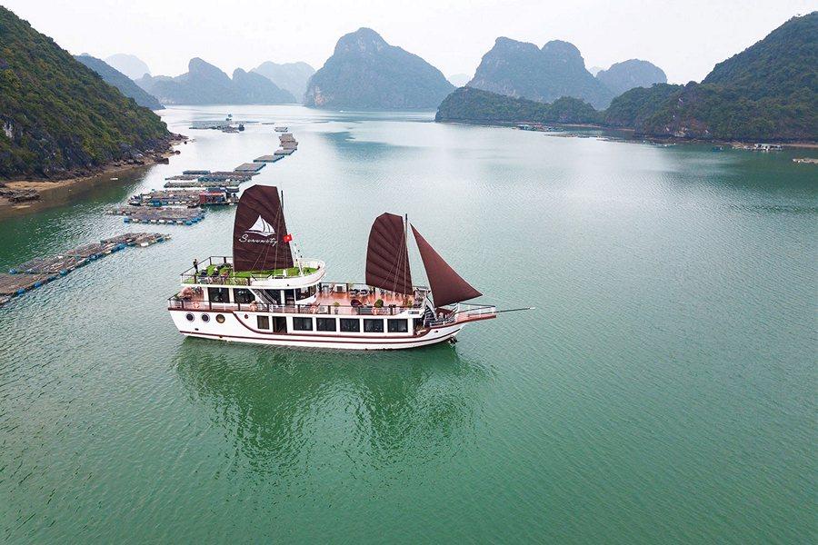 Du thuyền thăm Vịnh Lan Hạ, Cát Bà trong ngày
