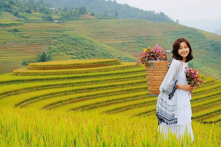 Tận hưởng vẻ đẹp Hoàng Su Phì mùa lúa chín
